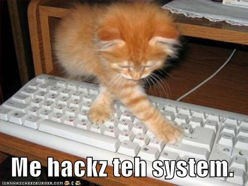 Kittee hacking