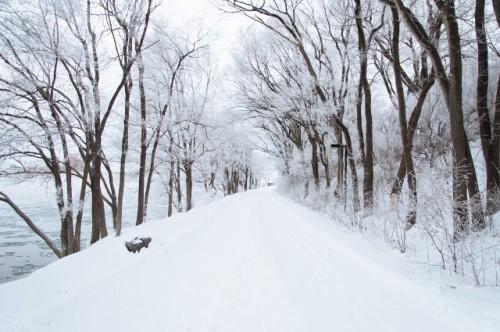 kalte Winterlandschaft